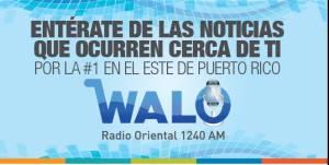 Walo-Web