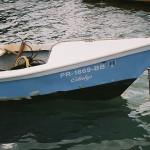 """""""En peligro de extinción"""" pescadores comerciales"""