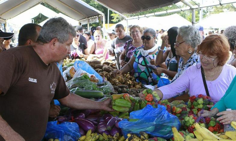 agricultura-productos-mosca frutera